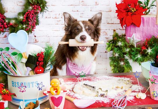 Orf Nachlese Rezepte Weihnachtskekse.Orf Nachlese Im November Der Orf At
