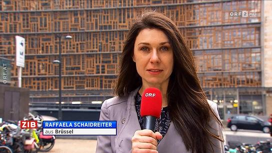 auslandskorrespondenten des zdf 2010